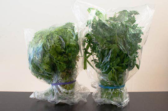 The Best Way to Keep Herbs Fresh — Reader Tip