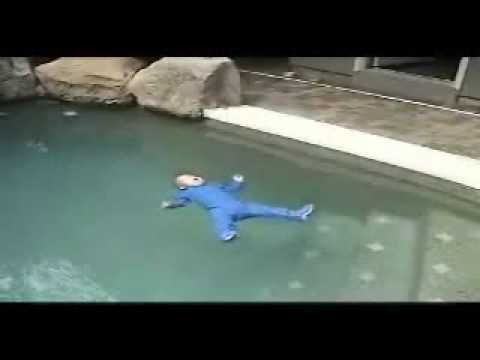 This video is for a new survival course for infants and todlers from YMCA. These courses have saved babies from drowning all over Florida. Every infant should take a course like this, especially if you have a pool.
