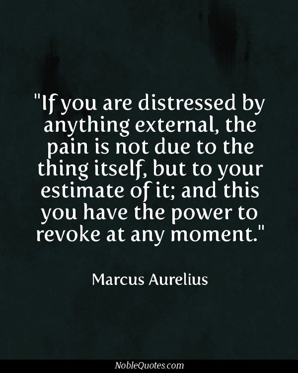 """If you are distressed by anything external, the pain is not due to the thing itself, but to your estimate of it; and this you have the power to revoke at any moment."" ~ Marcus Aurelius"