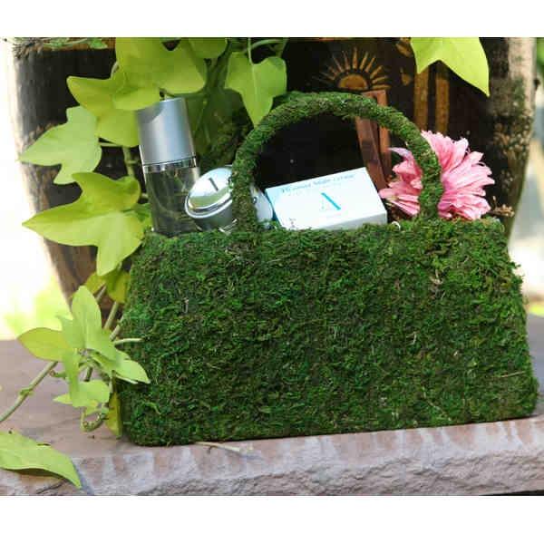 Rejuvenation basket in a Moss Purse