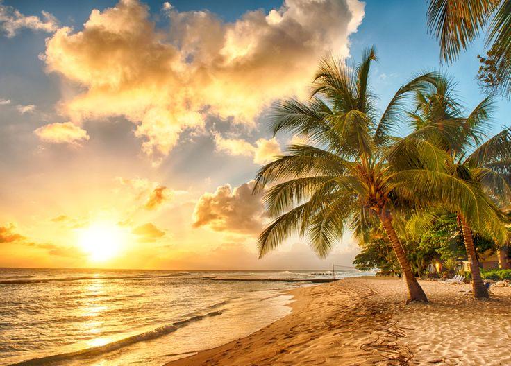 """KEINE ANGST VORM FLIEGEN - DER ROMAN Teil IV, Kapitel 40 """"""""Paradies … mein erster spontaner Gedanke bei dem Wort 'Paradies' ist ein Strand … bei Sonnenuntergang mit Palmen und das Meer rauscht leise … Fischer bringen gerade ihren Fang nach Hause. Es wird direkt am Strand frischer Fisch gegrillt. Morgens wacht man auf, nicht weil der Wecker klingelt, sondern weil Sonnenstrahlen....Auszug aus: Ellen Kuhn & Joachim Materna. """"Keine Angst vorm Fliegen - Der Roman."""""""
