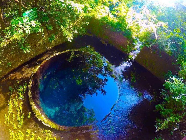みなさんは柿田川公園ってご存知ですか?静岡県清水町にある公園で、近年はパワースポットとしても注目を集めているんです。富士山麓からの湧き水がとてもきれいなコバルトブルーの絶景を生み出します。そんな柿田川公園を詳しくご紹介します!
