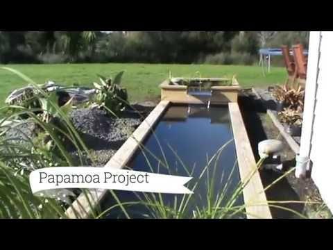 Papamoa Project