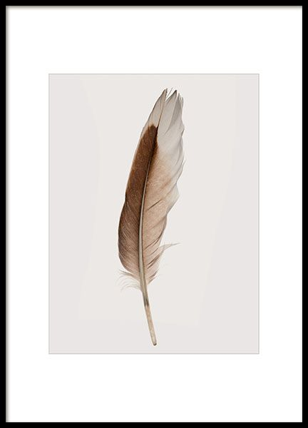 Print with photo of a feather.