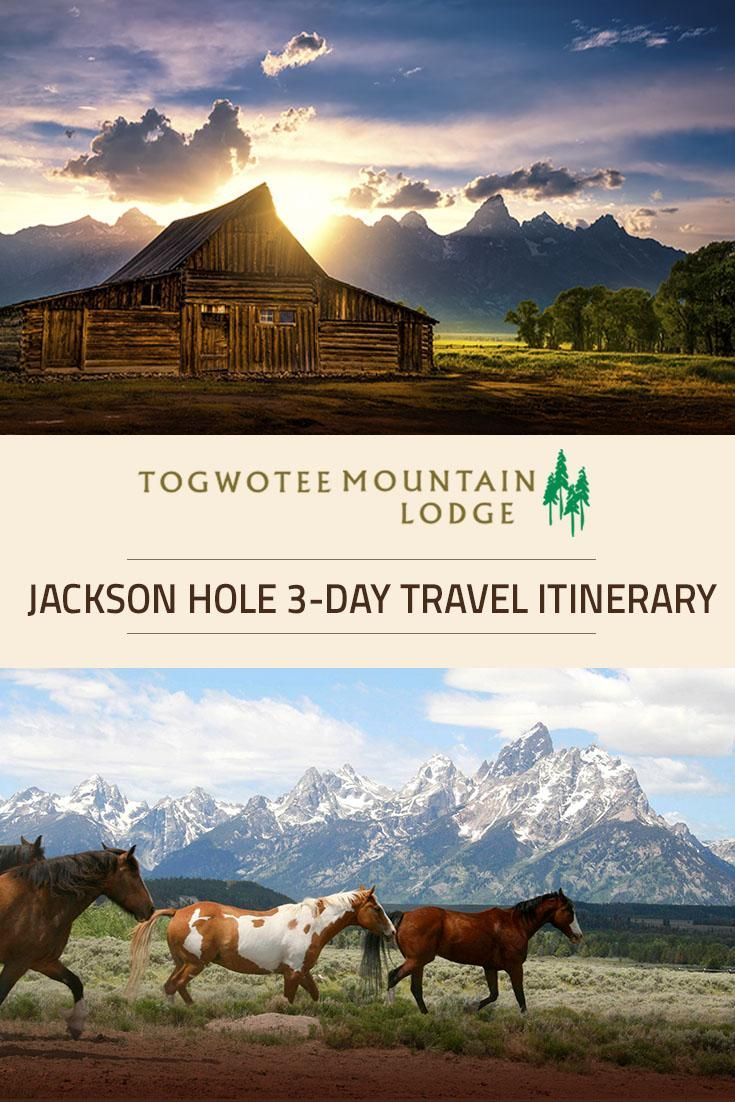 Here is a sample itinerary to help you plan your trip! Togwotee Mountain Lodge in Togwotee Pass, is located near Yellowstone & Grand Teton National Parks and Jackson Hole WY.