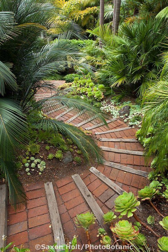 Brick path steps down through Worth tropical foliage garden on California hillside (colours & textures)