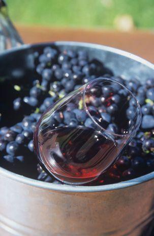 Vinho para leigos: tire 10 dúvidas e evite gafes                                                                                                                                                                                 Mais