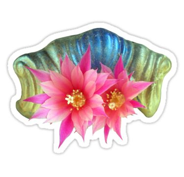 Pink Cactus Flower Sticker by StickerNuts