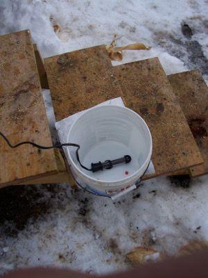 Adding an aquarium heater to the bucket waterer