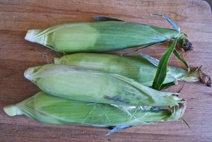 Learn the Fast and Furious (Silk-Free Way) to Shuck Corn: Start With Fresh Ears