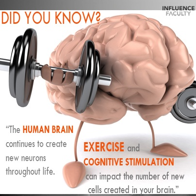 the human brain exercise This arrange game can be a very nice brain exercise, which focuses on prompting your ability to arrange numbers in the right order in a very short time.