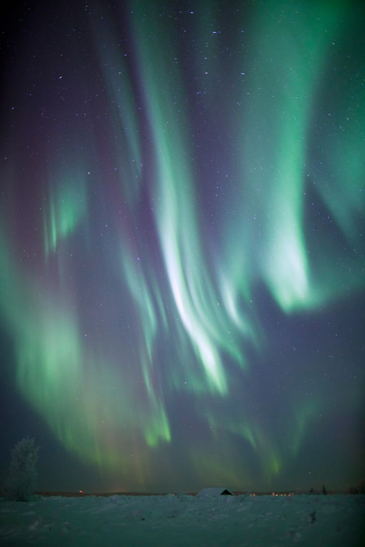 Northern Lights, Muonio, Finnish Lapland © Antti Pietikäinen