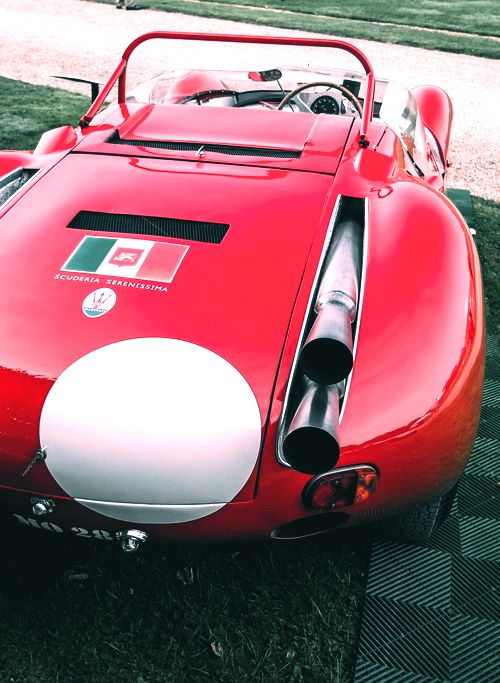 """forzaraikkonen: """" 1961 Maserati Tipo 63 008 """""""
