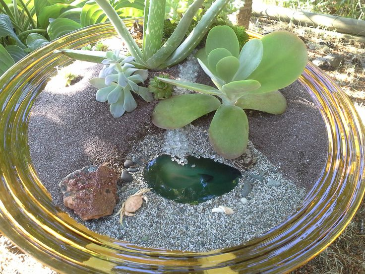 """A very special extra large order. The """"Journey Bowl"""".  Beautiful Cacti, Crystals & Stones were used together with the natural elements of our beaches, creating this amazing path. The customers favorite color is orange. Where does your journey take you? I can create it just for you! deansbaskets@gmail.com Browse my Facebook Page for inspiration, at Dean's Baskets, Unique Terrariums & More/Facebook *you do not have to be a Facebook Member to gain access :)"""