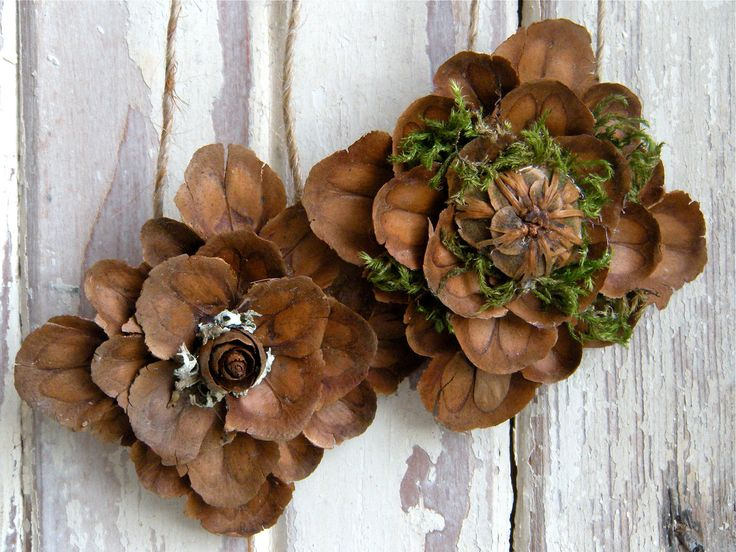 17 best pine cone crafts images on pinterest pine cones for Pine cone craft ideas