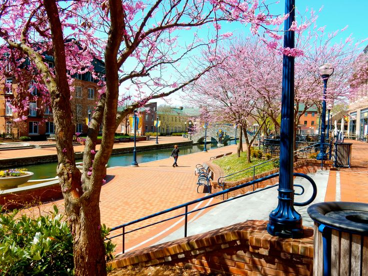 Frederick MD: A Mini-Philly With A Charm All Its Own