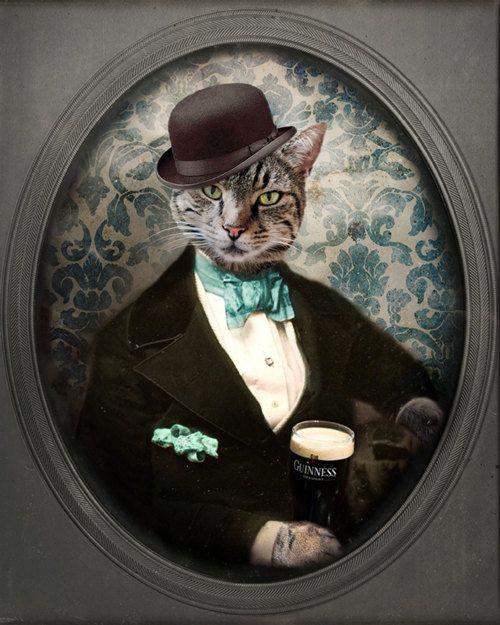 Guinness Beer Cat Art Animal Photography Cat with a Beer Cat Photo Pet Portrait Photography 8x10 PRINT - Lovely Day for a Guinness