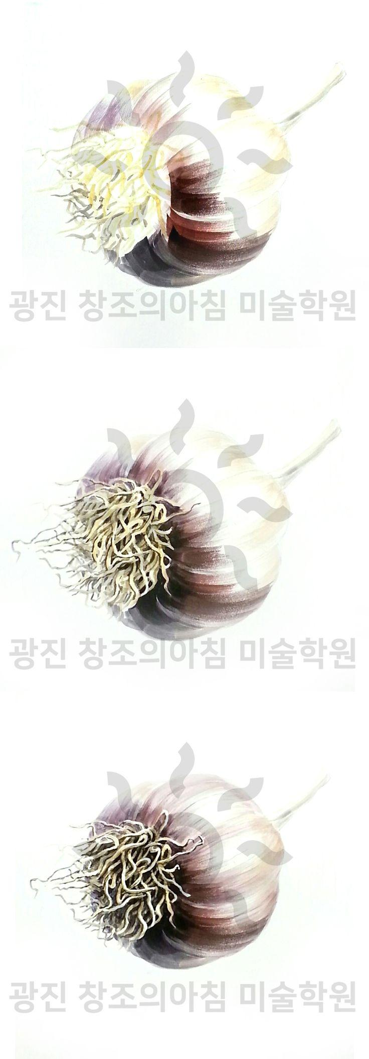 기초디자인 마늘 개체 묘사