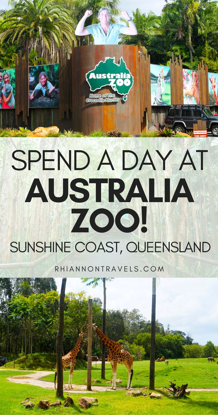 A Day at Australia Zoo on the Sunshine Coast, Queensland
