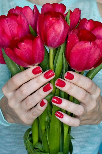 Opi Dutch tulips.