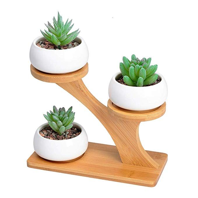 3PCS Table Decor Garden Succulent Planter Flowerpot Vase Cactus Bonsai Vase