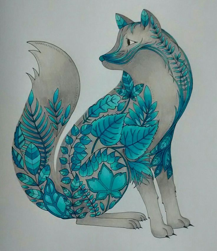 Turquoise Fox Enchanted Forest Coloring BooksAdult