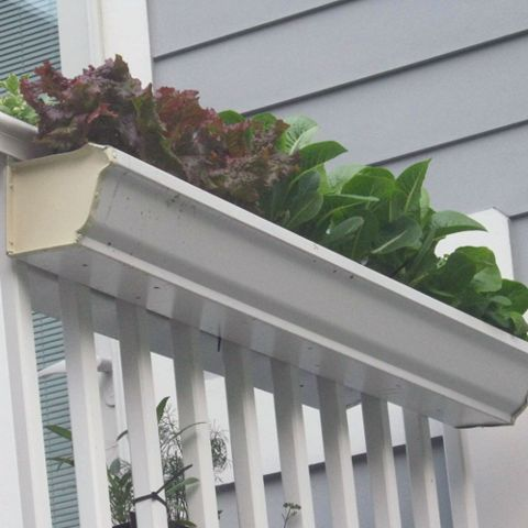 32 best gutter gardens images on pinterest gutter garden for Rain gutter planter box