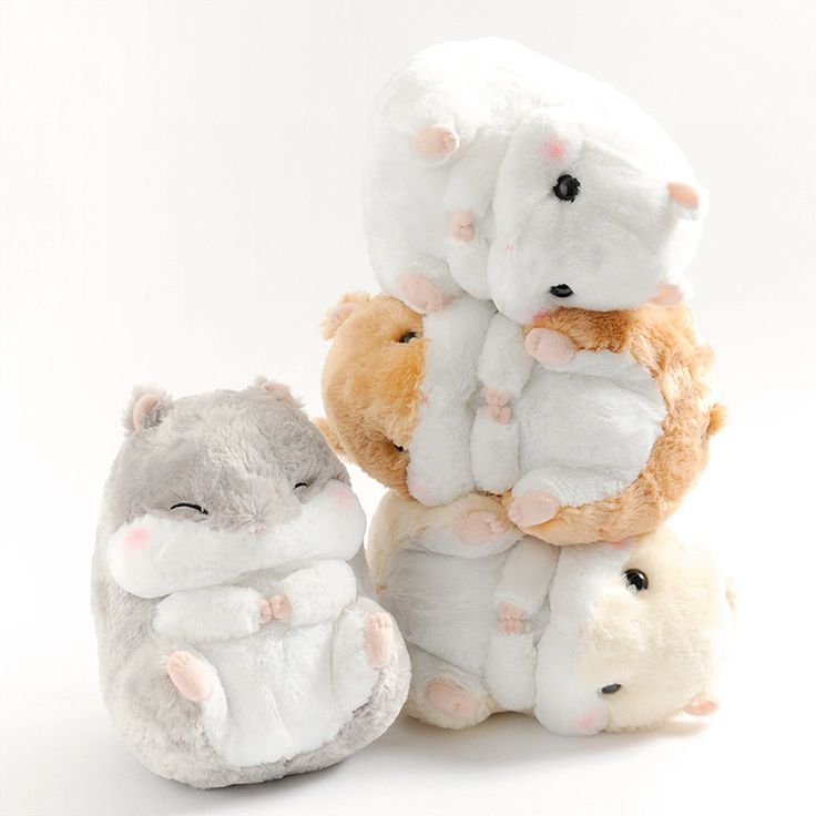 From Alpacasso-maker Amuse comes another set of adorable characters! Here are four adorably round and cuddly hamsters from the Coroham Coron series! Curled up into balls of fluff, you can't help but want to squeeze these cuties - especially their plump little cheeks. The Coroham Coron hamsters now come in jumbo size for the first time. And best of all, it's the perfect size to hug and snuggle with... #plushie