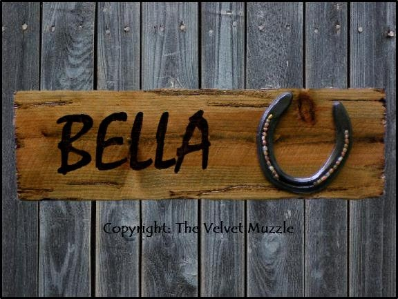 Horse Stall Signs - Personalized & Embellished Horseshoe - Neat idea