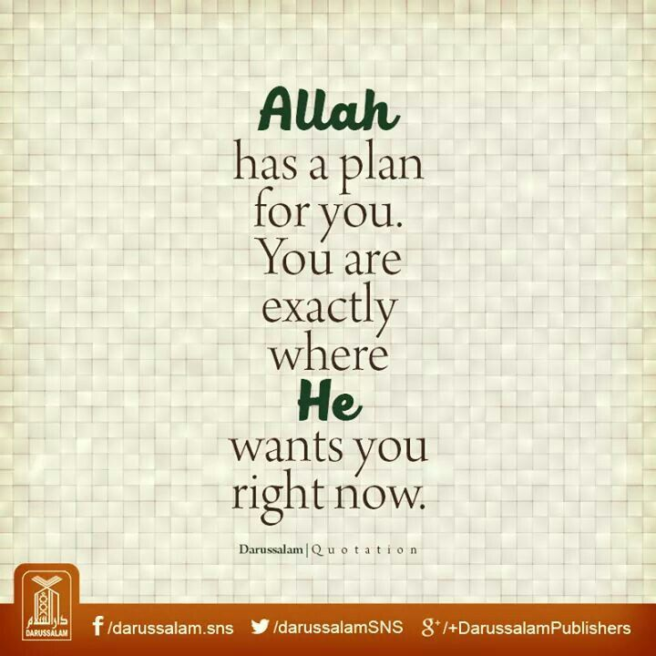 Allah has a plan for you. You are exactly where he wants you right now.