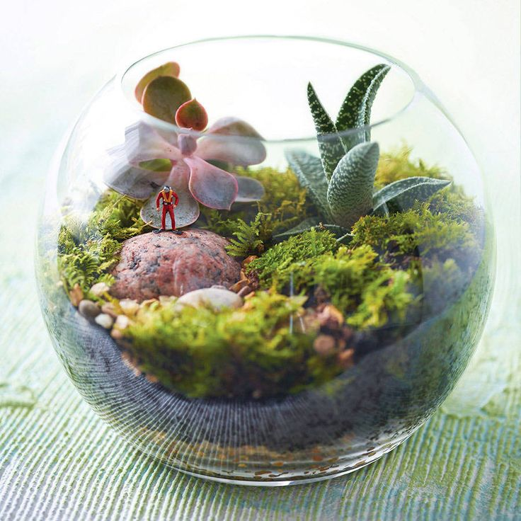 mini world policeman terrarium kit gardens london and minis. Black Bedroom Furniture Sets. Home Design Ideas