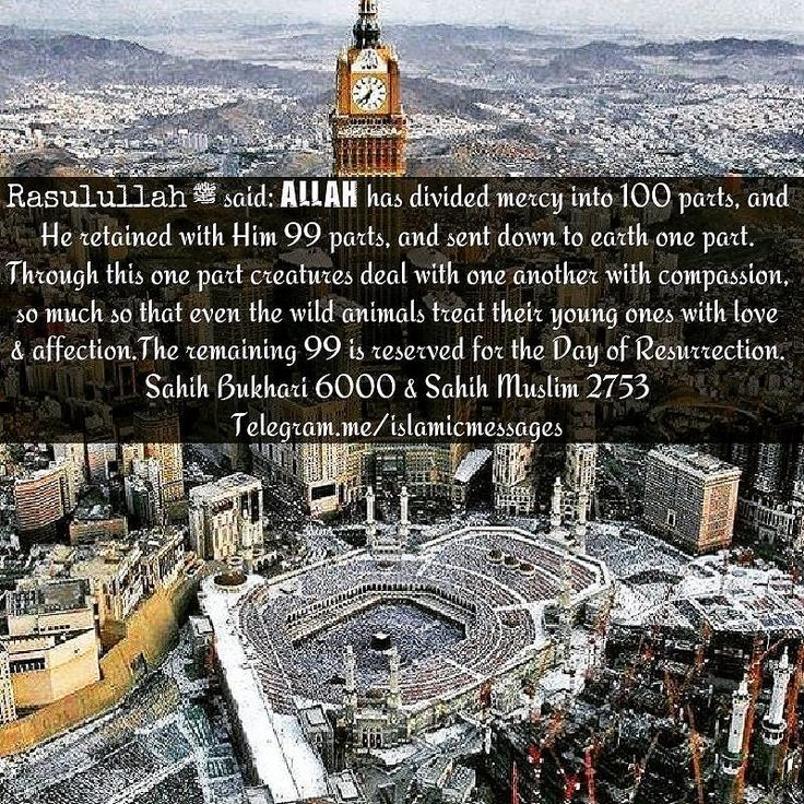 #Muhammed #Mohammed #Muhammad #Allah #God #Peace #love #islam #hijabi #peaceforall #muharram #fasting #muslimah #Hijab #Makkah #Madinah #Revert #Jannah #Quran #religion #Distress#Mercy Rasulullah ﷺ said: Allah has divided mercy into 100 parts and He retained with Him 99 parts and sent down to earth one part. Through this one part creatures deal with one another with compassion so much so that eventhe wild animals treat their young ones with love&affection.The remaining 99 is reserved for the…