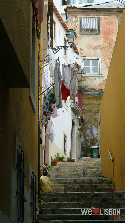 Mouraia; Lisboa.