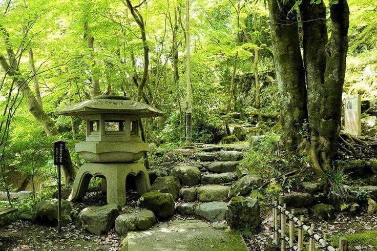A giant stone lantern in a green garden. Niigata, Japan  日本の石油王と呼ばれた中野貫一邸の裏山に拡がるもみじ園には、様々な石灯篭がありました。紅葉の頃ともなれば素晴らしい景色となろうものですが、人混みが大嫌いな私は清々しくも人影が疎らな初夏の方が良いなと思ったりします。 #loves_landscape #tgif_nature #bns_landscape #Icu_landscape  #BD_pro #石油の里 #新津 #新潟 #もみじ #日本庭園 #灯篭 #灯籠 #燈籠 #燈篭 #石燈籠 #石灯篭 #石灯籠 #石燈篭 #中野邸 #もみじ山 #lantern  #stonelantern  #garden  #Japanesegarden  #Japan  #Niigata  #maple  #green