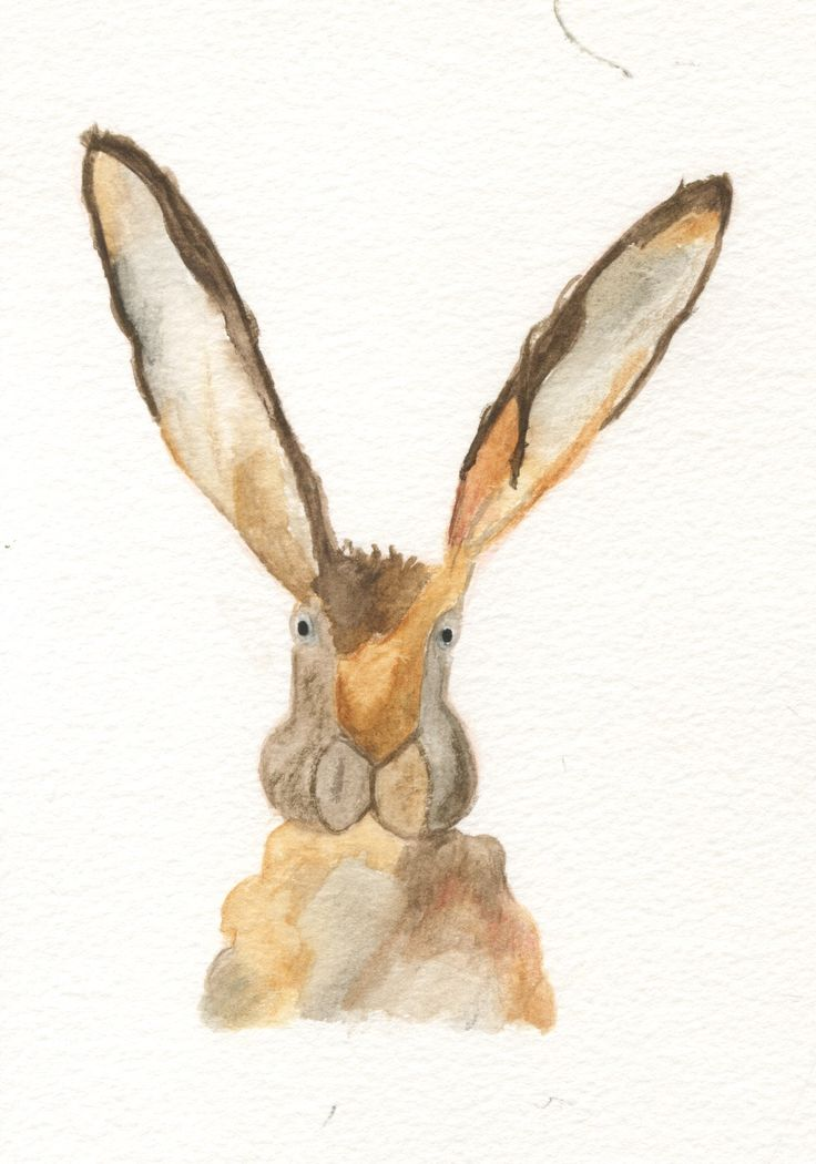 bunny water colour