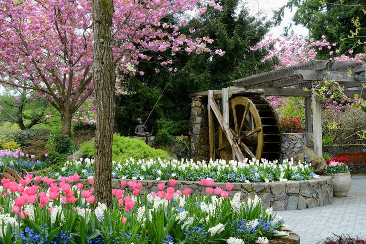 Waterrad butchart gardens