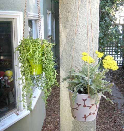 25 beste idee n over verticale tuinen op pinterest muur tuinen verticale sappige tuinen en - Outs kleine ruimte ...