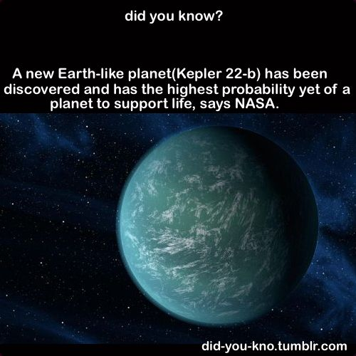 Weird Did You Know Facts | 10 fun and odd facts you probably didn't know