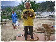 .•*¨Celals Tierasyl *•☆❤ Sie haben 700 Tiere zu versorgen! Bitte helft mit einer Patenschaft oder einer kleinen Spende an:  TESSA e.V. Spk. Marburg / Biedenkopf Kto. Nr. 11009891 Blz.53350000  danke