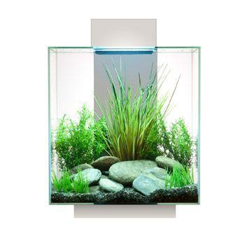 Fluval Edge Aquarium Kit in White at PETCO