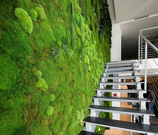 44 best Vertikale Gärten images on Pinterest Vertical gardens