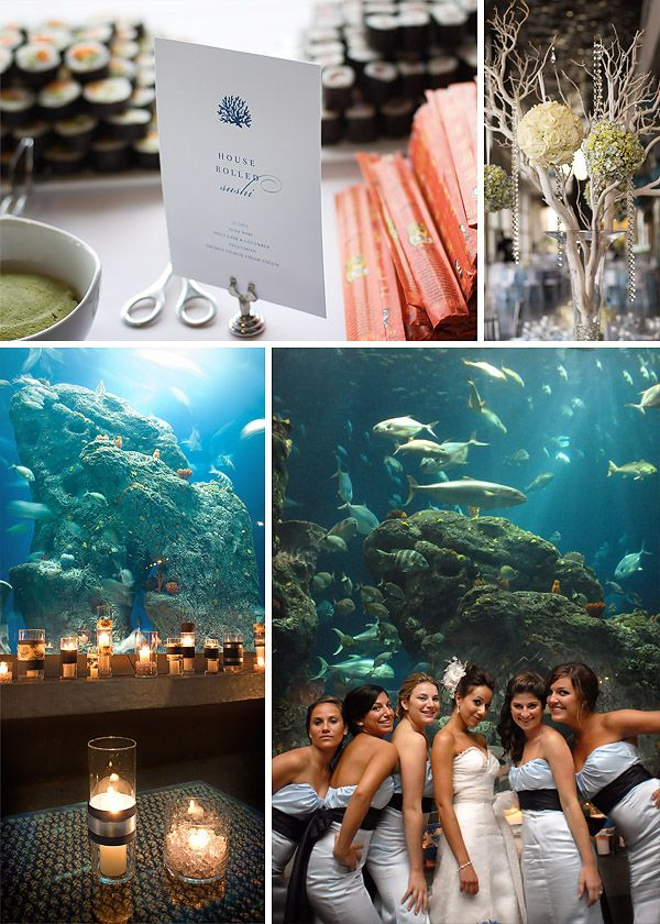 so wanna have my wedding reception at an aquarium!! don't hate ;)