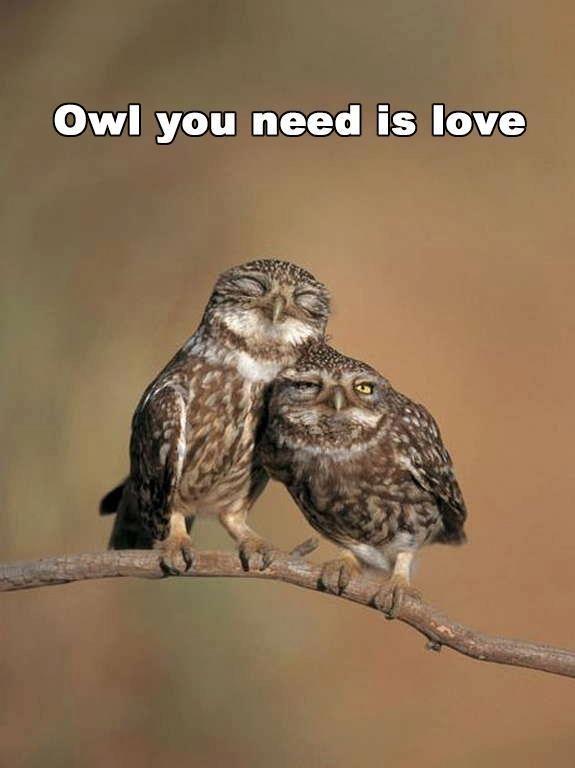 Tutti abbiamo bisogno di Amore