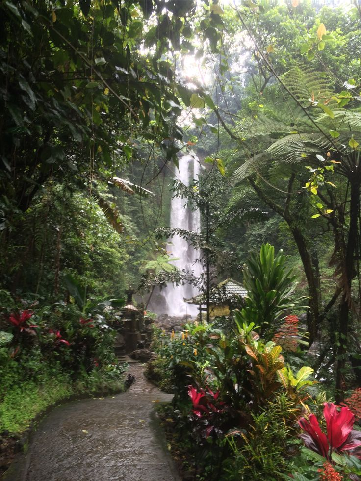 git git waterfall, Bali. beautiful waterfall that is reached very easily.