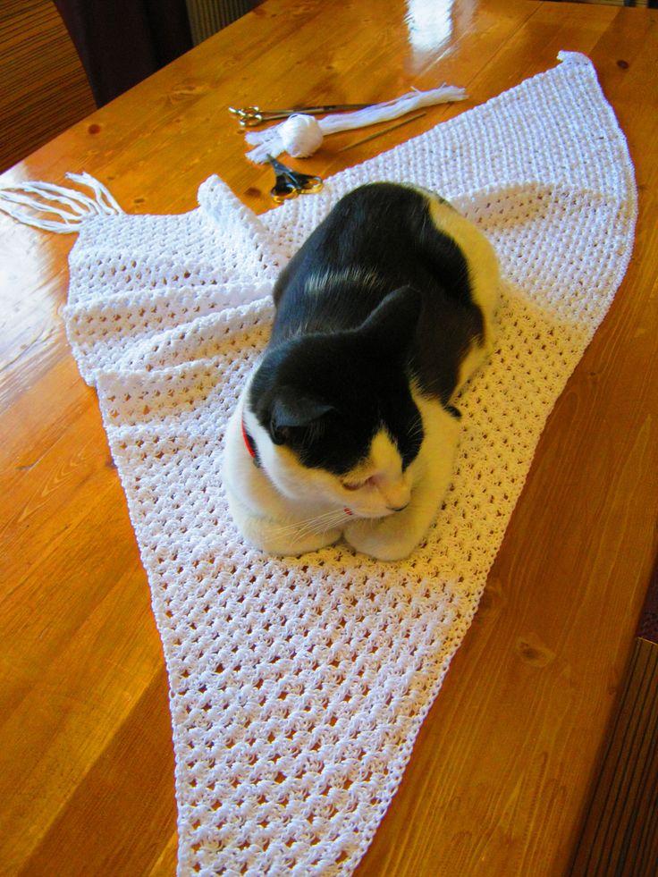 summer 2015  Elenitsa's shawl, and ( of course ) my cat ..Roxane