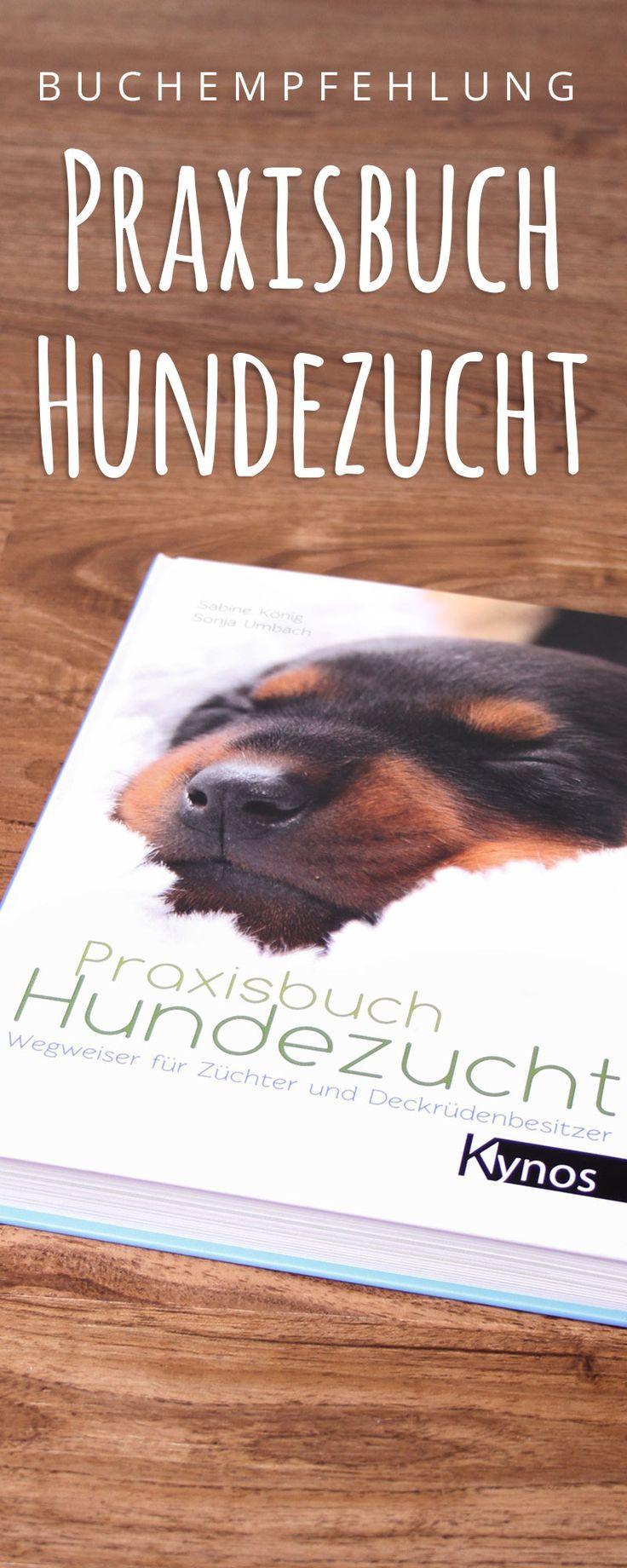 Endlich Auch Was Fur Deckrudenbesitzer Buchempfehlung Praxisbuch Hundezucht Dieses Buch Nimmt Endlich Auch Die Deckrud Hunde Bucher Buchempfehlungen