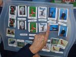 Birds - Free Afrikaans worksheets