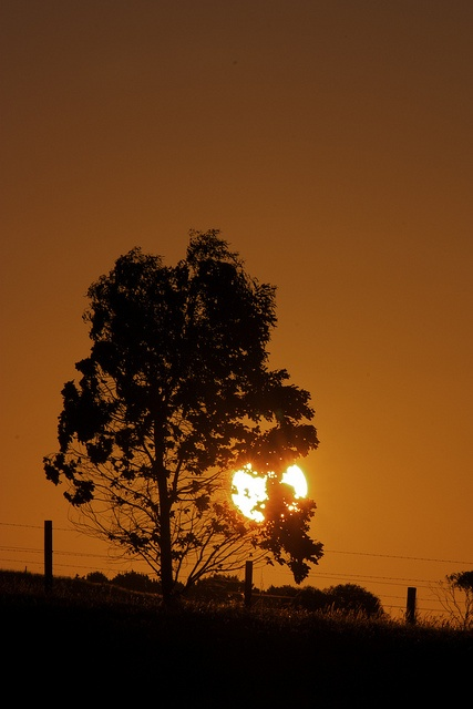 Mirboo sunset 21 Jan 12 by cathgrey28, via Flickr