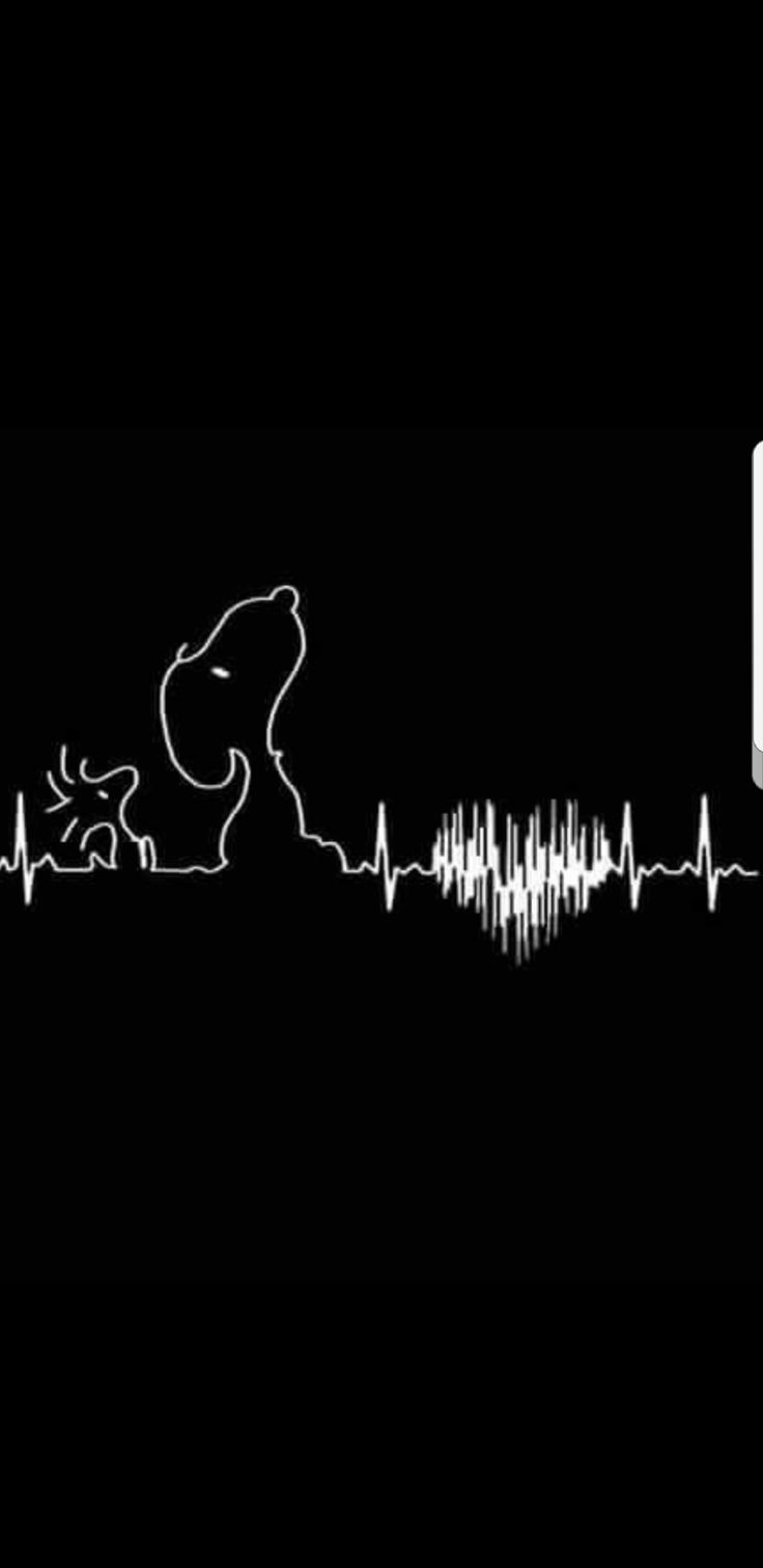 Snoopy and Woodstock heartbeat