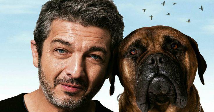 Ισπανική δραματική ταινία, η οποία έχει πάρει βραβεία #Goya καλύτερης ταινίας, καλύτερης σκηνοθεσίας, γεμάτη συναισθήματα για τη ζωή, τον θάνατο και τη (ζωό)φιλία. ------------------------------------------ #truman #movie #cinema #dog #fragilemagGR http://fragilemag.gr/truman/